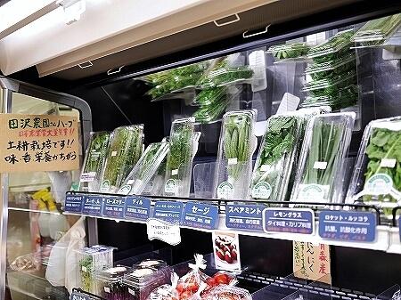 築地米金 青果店 八百屋 野菜 ハーブ 田沢農園 田澤農園