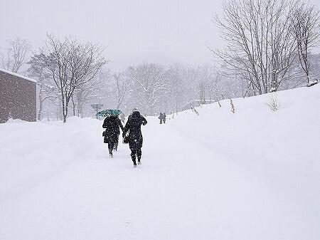 札幌円山動物園 北海道 冬 雪