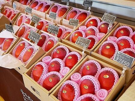 宮古島旅行記 ユートピアファーム 雨の日 観光 ブログ 農園 マンゴー お土産
