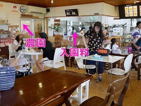 宮古島旅行記 ユートピアファーム 雨の日 観光 ブログ