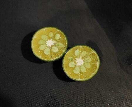 シークワーサーにおすすめ 貝印 セレクト100 ミニしぼり 絞り器 レモン絞り KAI しぼり SELECT100 シークヮーサー 皮ごと