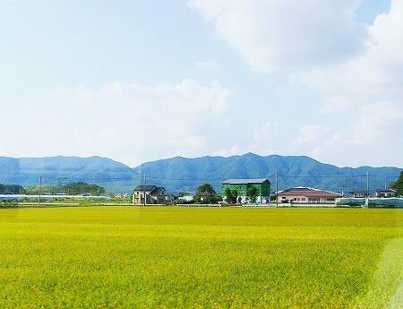 東武鉄道 特急 スペーシア個室 きぬ 室内 おすすめ 鬼怒川温泉旅行記 ブログ コンパートメント 景色 風景