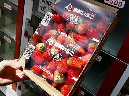 伊豆熱川駅 いちごの自動販売機 伊豆熱川旅行記 ブログ 口コミ レビュー お土産 おすすめ イチゴの自販機 章姫